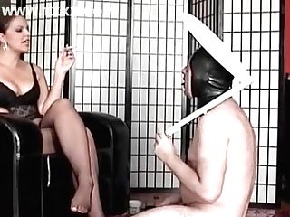 Mistress Toilet Worshipper
